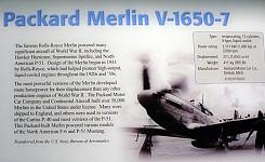 Merlin_3